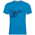 Men's F-DRY PRINT T-Shirt, blue aster - mountain print SS20, large