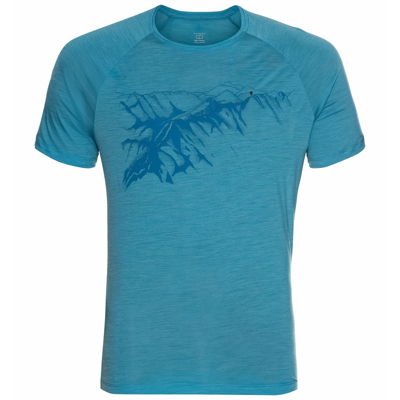 Herren CONCORD T-Shirt, horizon blue - mountain graphic SS21, large