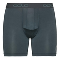Men's ACTIVE EVERYDAY Boxers  2-Pack, arctic - cycling AOP SS19 - dark slate, large