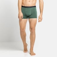 NATURAL + LIGHT-sportboxershort voor heren, climbing ivy, large